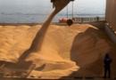 Soja disponível em Mato Grosso sobe 5,2% e vai a R$ 148