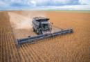 Colheita da soja em Mato Grosso chega a 73% da área
